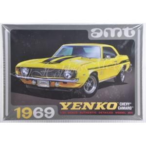 AMT1093